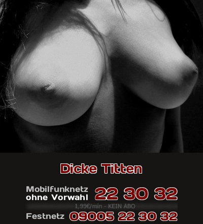 Die Rundungen der Brüste, schöne pralle dicke Titten, sie machen geil - auch beim Telefonsex!